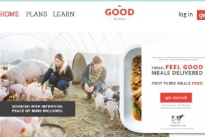 The Good Kitchen, home page pictured, offers organic paleo meal delivery to residents of NC and across the country.